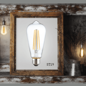 Industrial Light bulb photo in picture frame